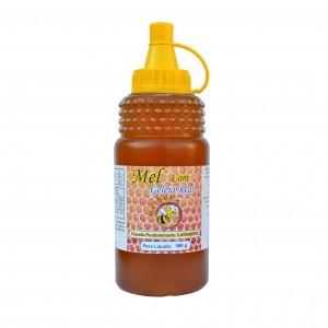 Mel Composto com Geleia Real - Várias Floradas - Embalagem 500g